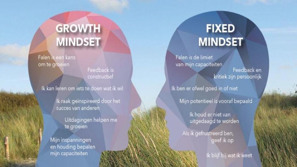 Growth mindset fixed mindset workshop maak je persoonlijke ontwikkelplan